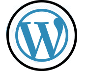 WordPress Developers In Miami